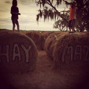 #FarmED_Dakin_Hay_AllardPPC(ip)
