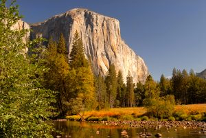 view of the morning light striking el capitan from merced river with autumn colors in yosemite national park